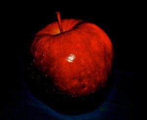 poison_apple